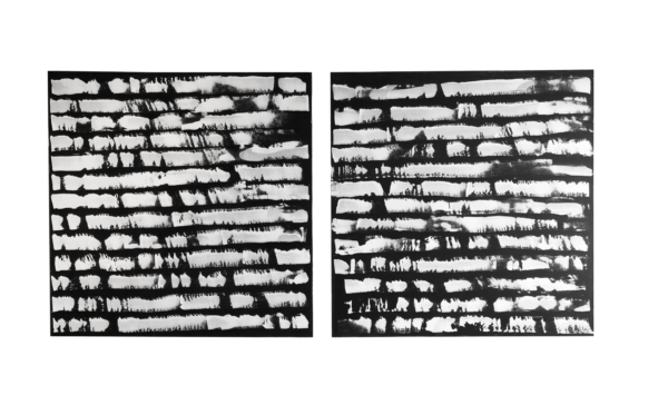 Black and White Diptych