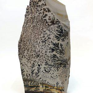 Dendrite