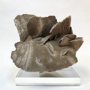 Sand Selenite